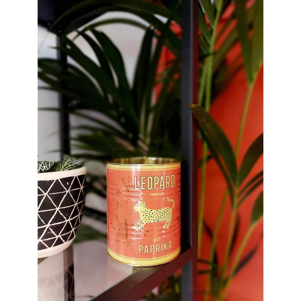 Pretty Cactus Plants  Red Leopard Tin Planter - 10 X 11cm