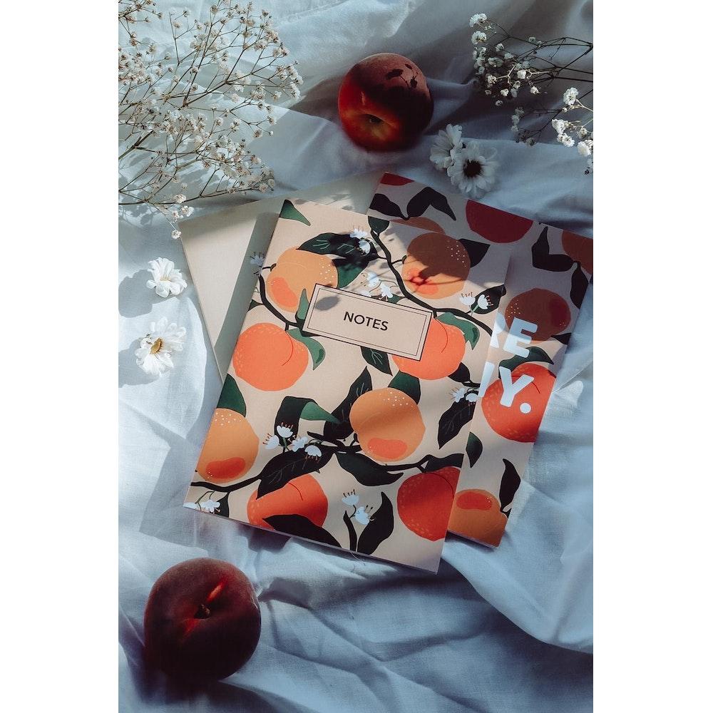 Brew Norfolk Set Of 3 A5 Peach Notebooks