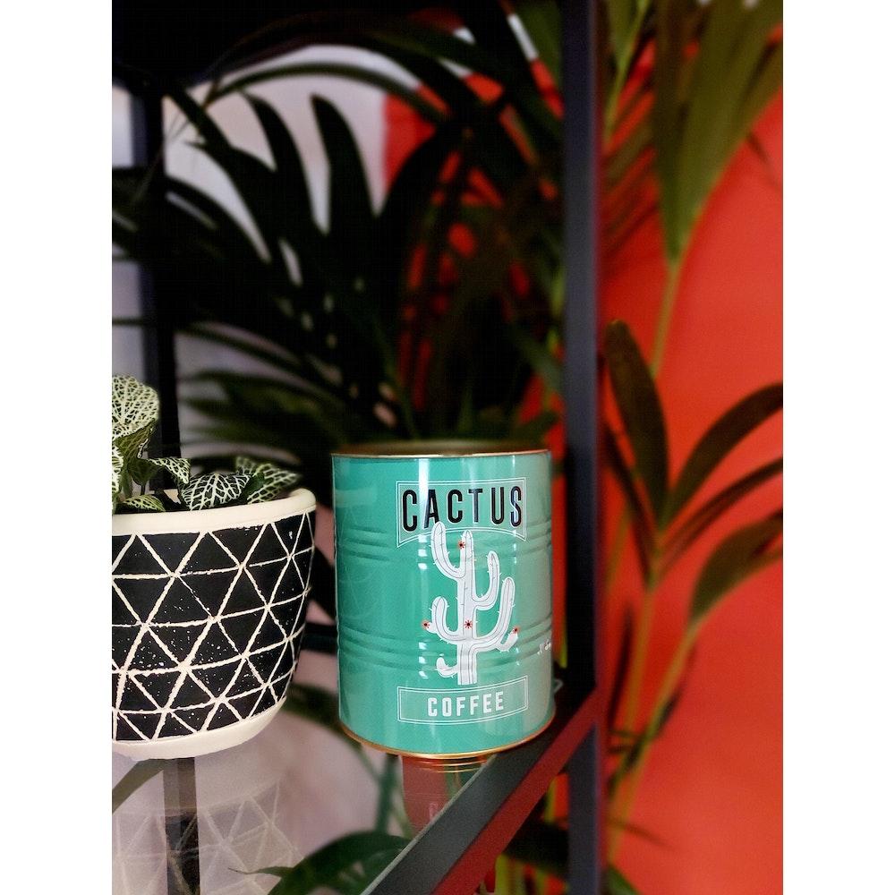 Pretty Cactus Plants  Green Cactus Tin Planter - 11 X 13cm