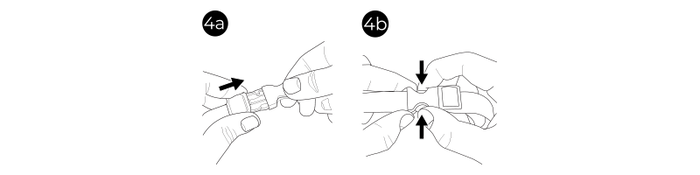 fig4a4b_1-png