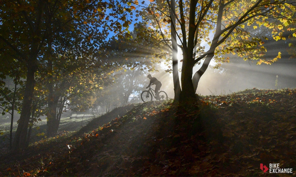 mountain-bike-comparison-guide-categories-jpg