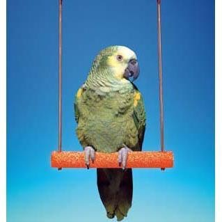 """Penn Plax Cement Bird Swing with Wire Frame  9"""""""""""