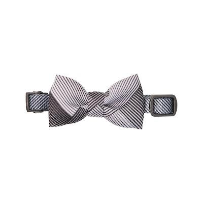 Pidan Bow Tie Collar - Cat - A1