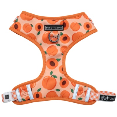 Big & Little Dogs Just Peachy Adjustable Harness