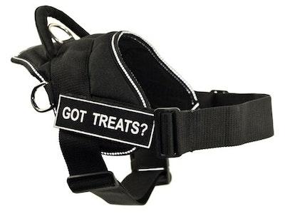 Dean and Tyler - Fun Dog Harness