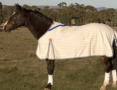 Capriole Equestrian Deluxe Grey & Royal Blue Summer Rug