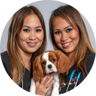 Dr Audrey & Alison Shen_Bondi Vet