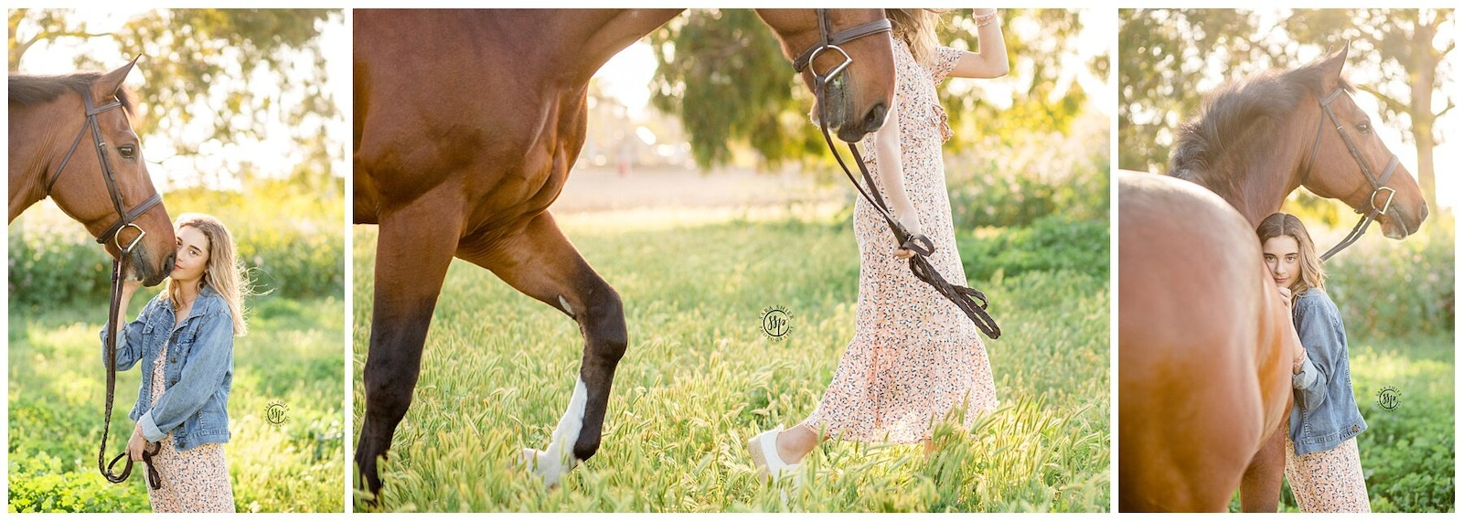Sara Shier Photography: What YOU Should Look For When Hiring An Equine Photographer