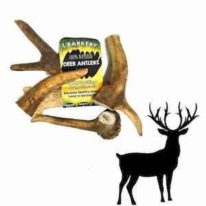 L'Barkery L'Barkery Deer Antlers