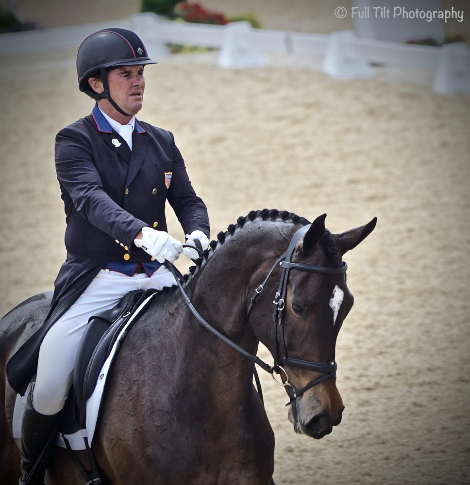 My Virtual Eventing Coach: An Exercise to Help You Improve ALL of Your Downward Transitions