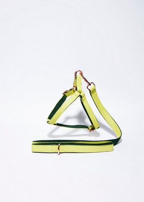 House of Pets Delight 'Lime' Step In Harness Set