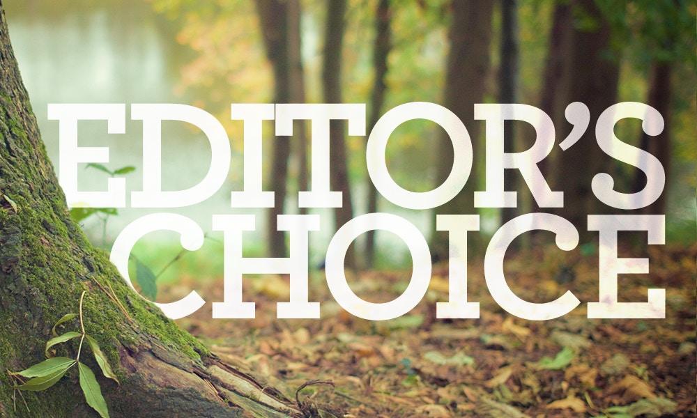 Editor's Choice - November