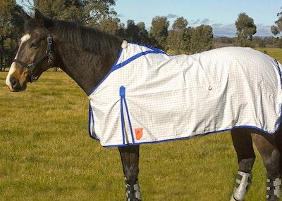 Capriole Equestrian Eco Rose & Royal Blue Summer Rug