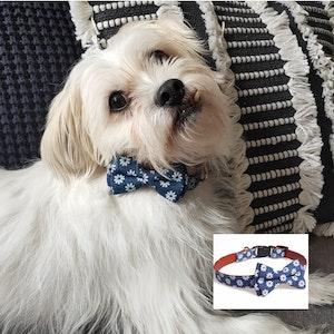 """Queenie's Pawprints Cotton Bowtie Dog Collar """"Daisy"""""""