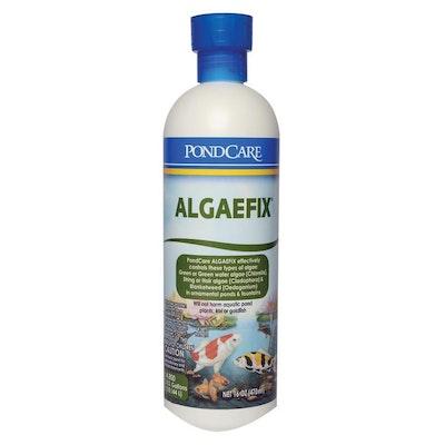 API Algaefix Algae Control for Ponds
