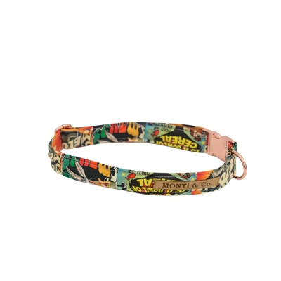 MONTi & Co Looney Tunes Dog Collar