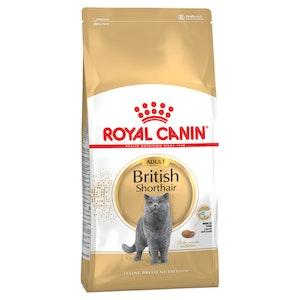 Royal Canin Breed Nutrition Cat British Shorthair