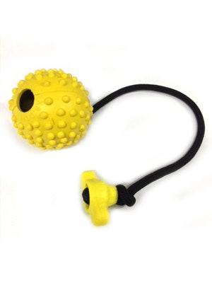 Elite K9 Working Dog Ball with T Handle