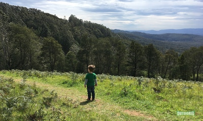 Seven Tips for Bushwalking with Kids