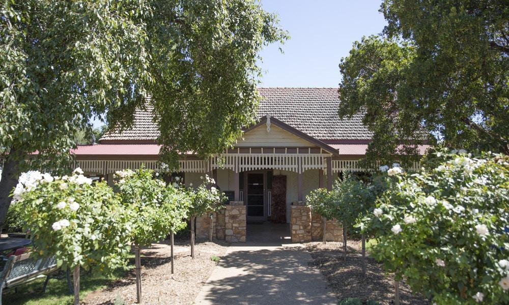Rich Glen Olive Estate