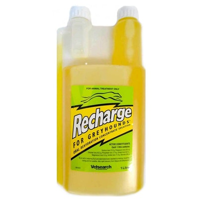Virbac Recharge Greyhounds Oral Rehydration Concentrate Solution - 2 Sizes