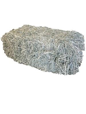 Woonona Petfood & Produce Hay Rhodes Grass