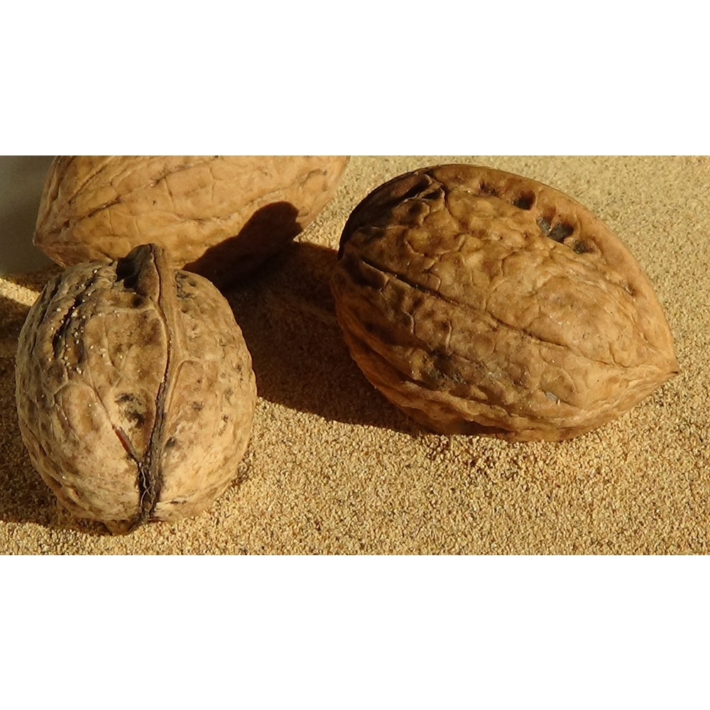 Natural Spa Supplies Walnut Shell Powder Natural Exfoliant Cosmetic Ingredient
