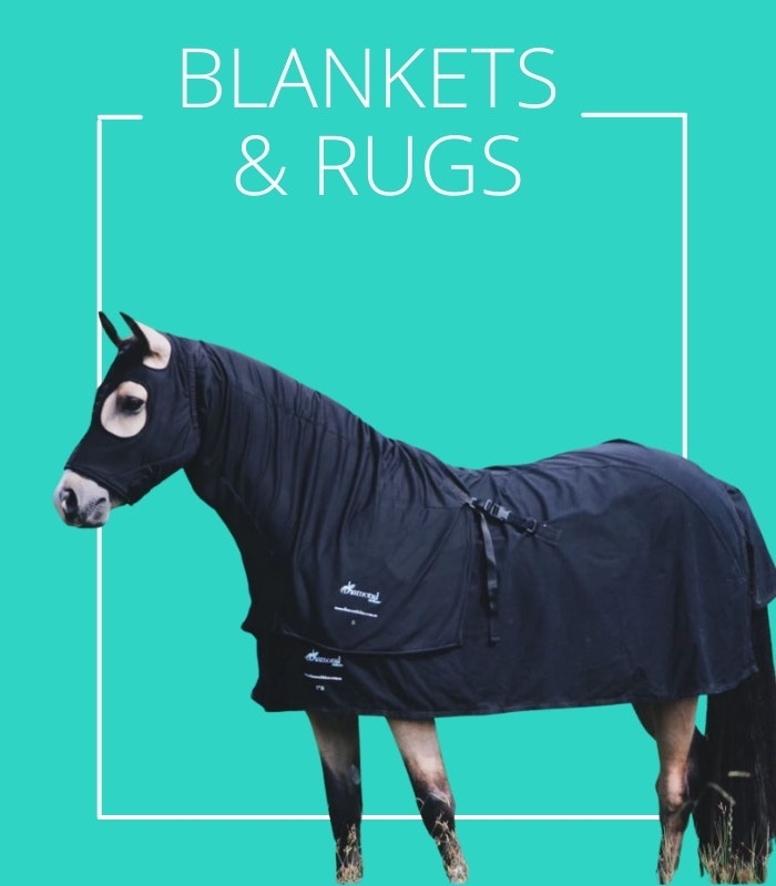 winter and summer horse rugs an combos