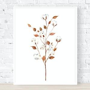 Cotton Flowers - Archival Print