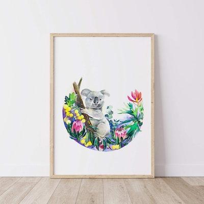 Watercolour by Cat Koala // Australian Natives Watercolour Prints