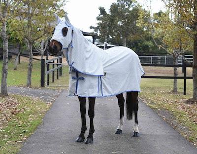KINGSLEY Ripstop Hooded Horse Rug
