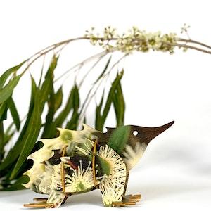 Echidna 3D model kit