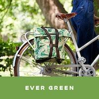 ever-green-jpg