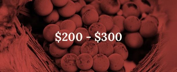 200 - 300 price range