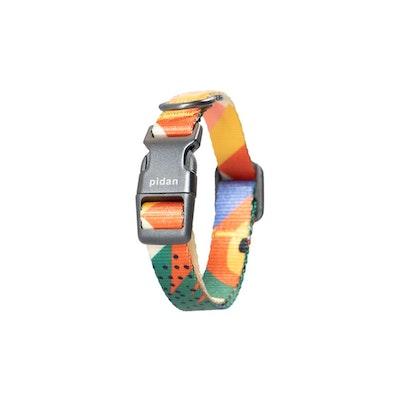 Pidan Collar - Dog - S1