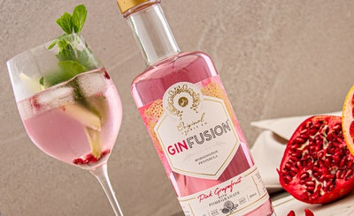 Pink Grapefruit & Pomegranate Ginfusion 500ml