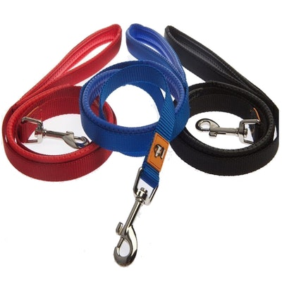 Canny Company Canny Lead for Canny Collar Dogs & Puppies Walk Training - 2 Sizes