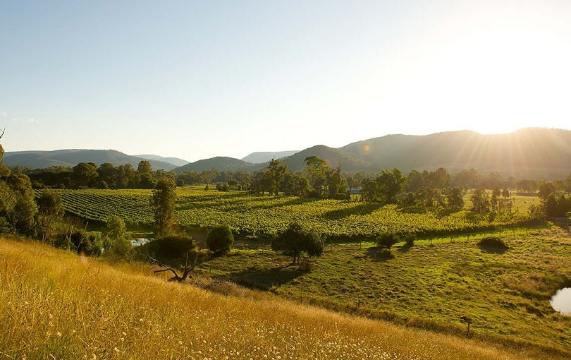 King Valley wine region