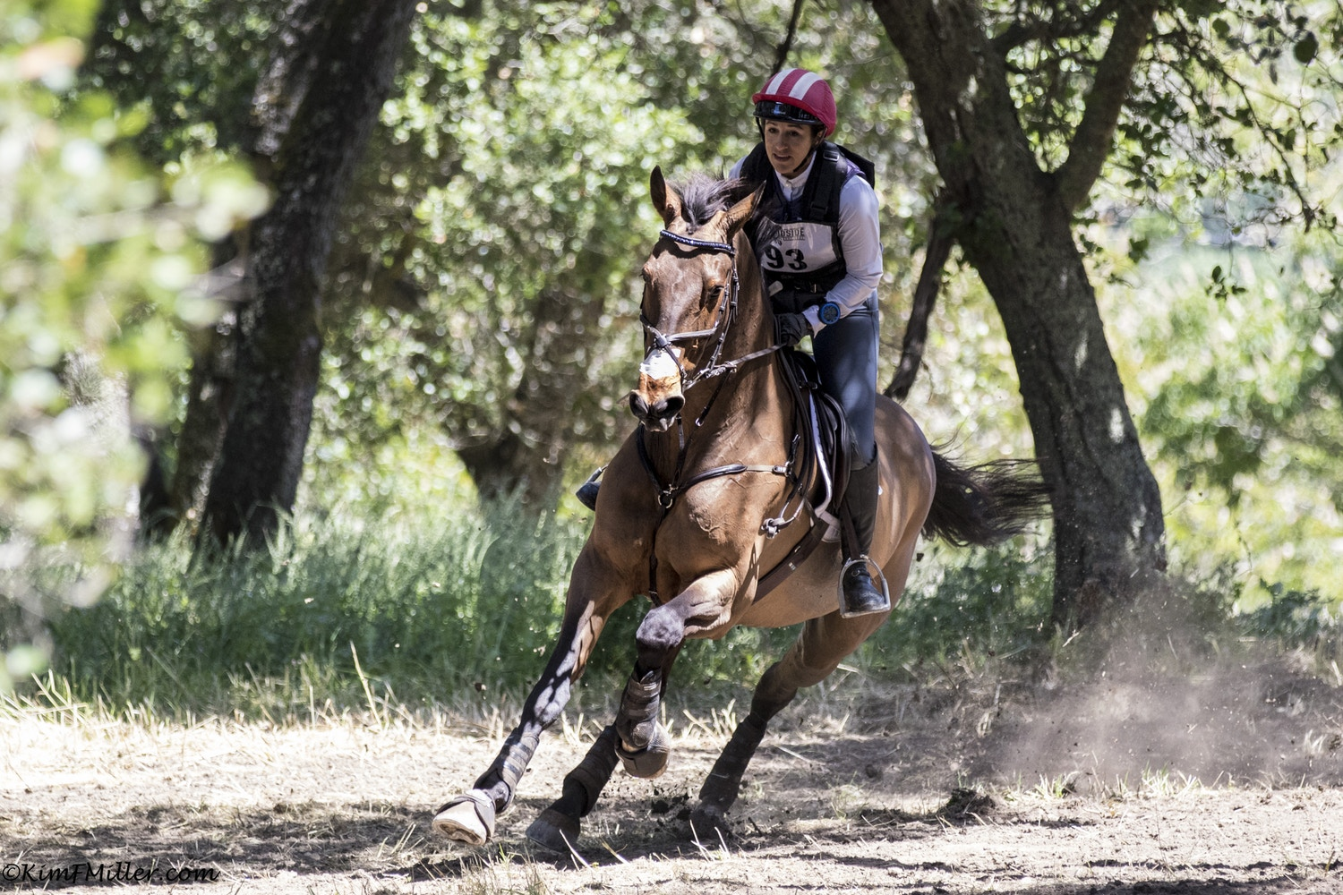 Lauren Billys & Purdy: On Track for Tokyo