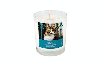 Kitty Kitchen Calm Feline Ritual Candle