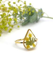 Wattle Teardrop Ring