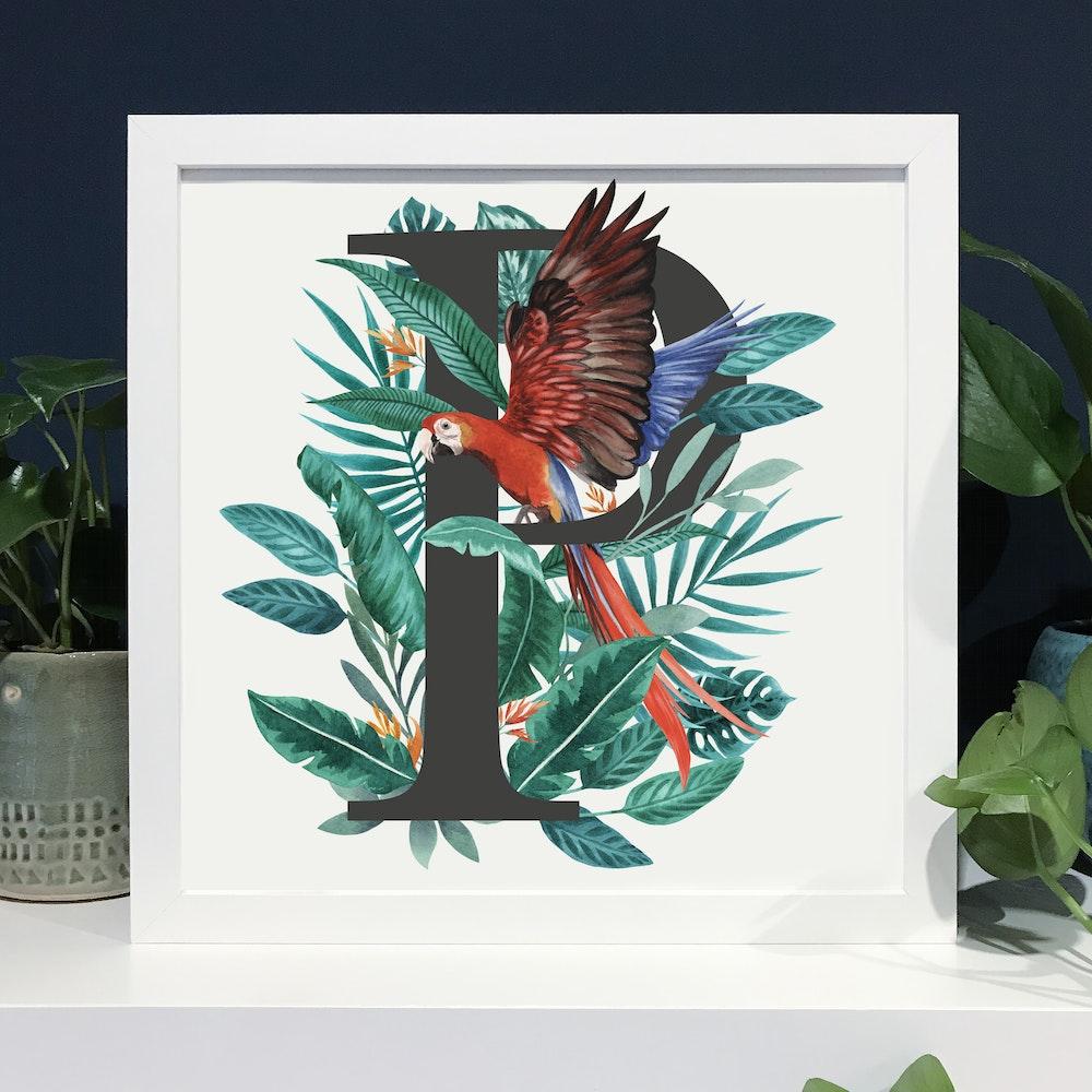 Laura Elizabeth Illustrations P For Parrot Fine Art Print