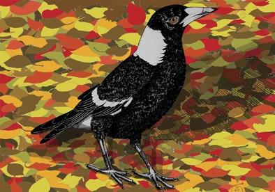 Print - Magpie in Autumn