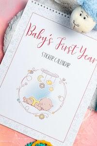 Baby Memory Book- Baby's First Year Sticker Calendar Pretty Pink