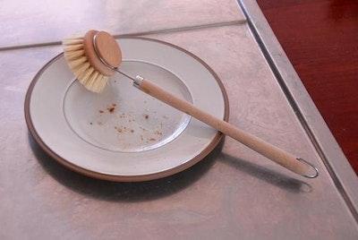 Dish Brush - Small
