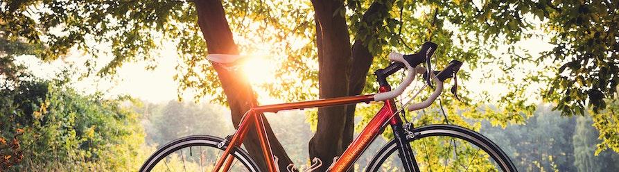 Bike Schmiede Biesenrode GbR
