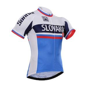 Santini 2015 Team Jersey