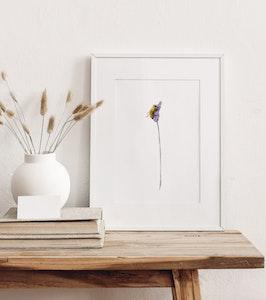 Lavender Bee: Fine Art Print