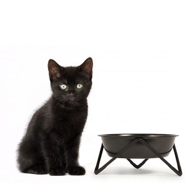 Bendo MEOW - CAT BOWL - Black bowl on Black Stand
