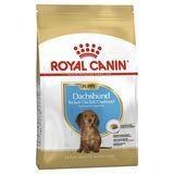 Royal Canin Dry Dog Food Dachshound Puppy 1.5kg